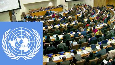 UN-Ausschuss-400-2